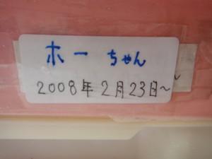 Dsc08341